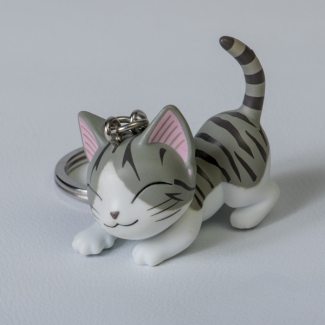 Chi's Sweet Home Cat Key Ring : Hug